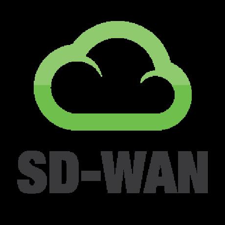 SD-WAN-02